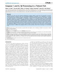 Plos One : Caspase-1 and Il-1B Processin... by Boudinot, Pierre