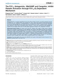 Plos One : the P2Y12 Antagonists, 2Mesam... by Tseng, Ching-ping