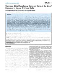 Plos One : Upstream Distal Regulatory El... by Wilber, Andrew C.