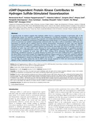 Plos One : Cgmp-dependent Protein Kinase... by Schmidt, Harald, H.H.W.