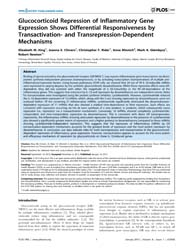 Plos One : Glucocorticoid Repression of ... by Ito, Kazuhiro