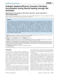 Plos One : Endoglin Haploinsufficiency P... by Brandner, Johanna, M.