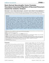 Plos One : Brain-derived Neurotrophic Fa... by Chédotal, Alain