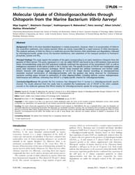 Plos One : Molecular Uptake of Chitoolig... by Muller, Daniel, J.