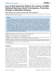 Plos One : Loss of Lkb1 Expression Reduc... by Zang, Mengwei