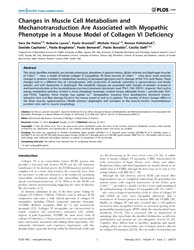 Plos One : Changes in Muscle Cell Metabo... by Akaaboune, Mohammed