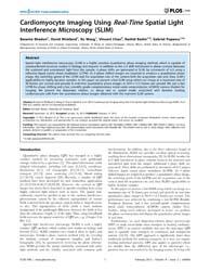 Plos One : Cardiomyocyte Imaging Using R... by Metze, Konradin