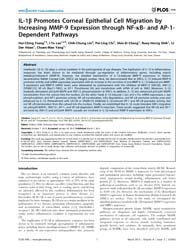 Plos One : Il-1Β Promotes Corneal Epithe... by Zirlik, Andreas