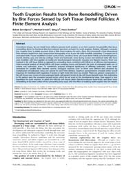 Plos One : Tooth Eruption Results from B... by Coles, A. Jonathan