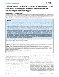 Plos One : the Jaw Adductor Muscle Compl... by Kupczik, Kornelius