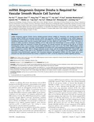 Plos One : Mirna Biogenesis Enzyme Drosh... by Pesce, Maurizio