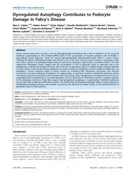 Plos One : Dysregulated Autophagy Contri... by Chatziantoniou, Christos
