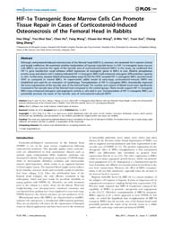 Plos One : Hif-1Α Transgenic Bone Marrow... by Williams, Bart, O.