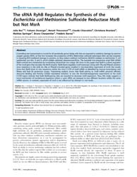 Plos One : the Srna Ryhb Regulates the S... by Cascales, Eric