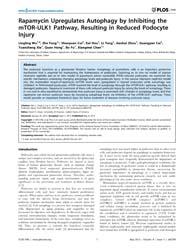 Plos One : Rapamycin Upregulates Autopha... by Dryer, Stuart, E.