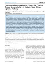 Plos One : Cadmium-induced Apoptosis in ... by Kahle, Philipp, J.