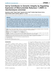 Plos One : Sen1P Contributes to Genomic ... by Chadwick, Brian, P.