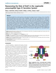 Plos One : Reassessing the Role of Dotf ... by Zamboni, Dario, S.