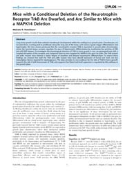Plos One : Mice with a Conditional Delet... by Beier, Frank