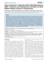 Plos One : Heme Oxygenase-1 Regulates Ma... by St-pierre, Yves