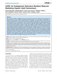 Plos One : Ildr2 ; an Endoplasmic Reticu... by Gnoni, Gabriele, Vincenzo