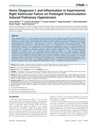 Plos One : Heme Oxygenase-1 and Inflamma... by Lahm, Tim
