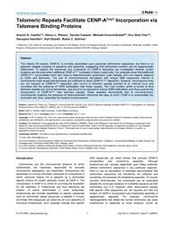 Plos One : Telomeric Repeats Facilitate ... by Sullivan, Beth A.