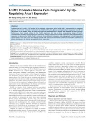 Plos One : Foxm1 Promotes Glioma Cells P... by Nakano, Ichiro