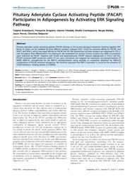Plos One : Pituitary Adenylate Cyclase A... by Vaudry, Hubert
