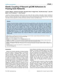 Plos One : Elastic Coupling of Nascent A... by Kreplak, Laurent