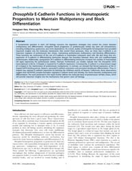 Plos One : Drosophila E-cadherin Functio... by Tjwa, Marc