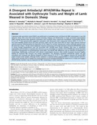 Plos One : a Divergent Artiodactyl Myadm... by Moore, Stephen