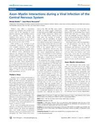 Plos Pathogens : Axon–myelin Interaction... by Brahic, Michel