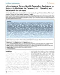 Plos Pathogens : Inflammasome Sensor Nlr... by Deretic, Vojo