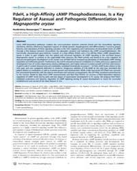 Plos Pathogens : Pdeh, a High-affinity C... by Howlett, Barbara, Jane