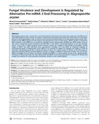 Plos Pathogens : Fungal Virulence and De... by Madhani, Hiten D.