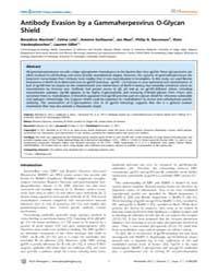 Plos Pathogens : Antibody Evasion by a G... by Damania, Blossom