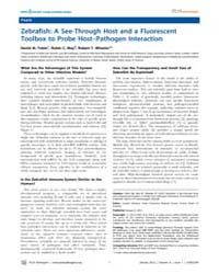 Plos Pathogens : Zebrafish ; a See-throu... by Heitman, Joseph
