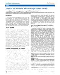 Plos Pathogens : Type III Secretion in Y... by Miller, Virginia