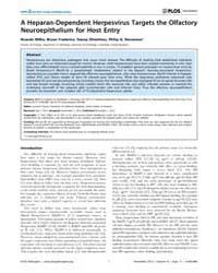Plos Pathogens : a Heparan-dependent Her... by Coscoy, Laurent