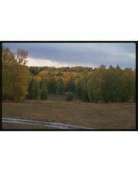 Brumfield Photographs : Siberian Fall La... by Brumfield, William Craft