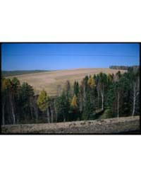 Brumfield Photographs : View from Trans ... by Brumfield, William Craft