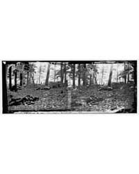 Gettysburg, Pennsylvania. Scene in the W... by Gibson, James, F.