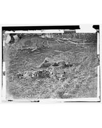 Antietam, Maryland. Battlefield Near She... by Gardner, Alexander