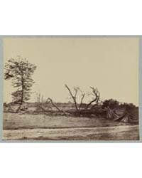 Confederate Lines at Cold Harbor, Va., P... by Russell, Andrew J.