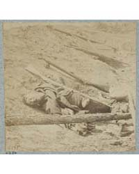 Dead Confederate Soldiers in Trenches of... by E. & H.T. Anthony