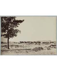 The Lone Graves at Warren Station in Fro... by Library of Congress