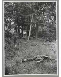 Confederate Dead on Matthews Hill, Bull ... by O'Sullivan, Timothy H.