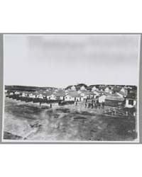 Encampment Near Washington, D.C., Photog... by Library of Congress