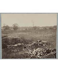 Confederate Dead, Photograph Number 3290... by O'Sullivan, Timothy H.